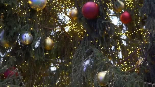 Zavřete vánoční stromeček světla třpytící se v noci. Novoroční jedle s dekoracemi a osvětlením. Vánoční stromeček dekorace pozadí.