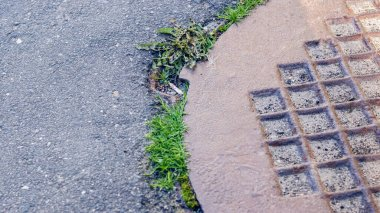 Sewer manhole on the pavement and green grass close up, copy space