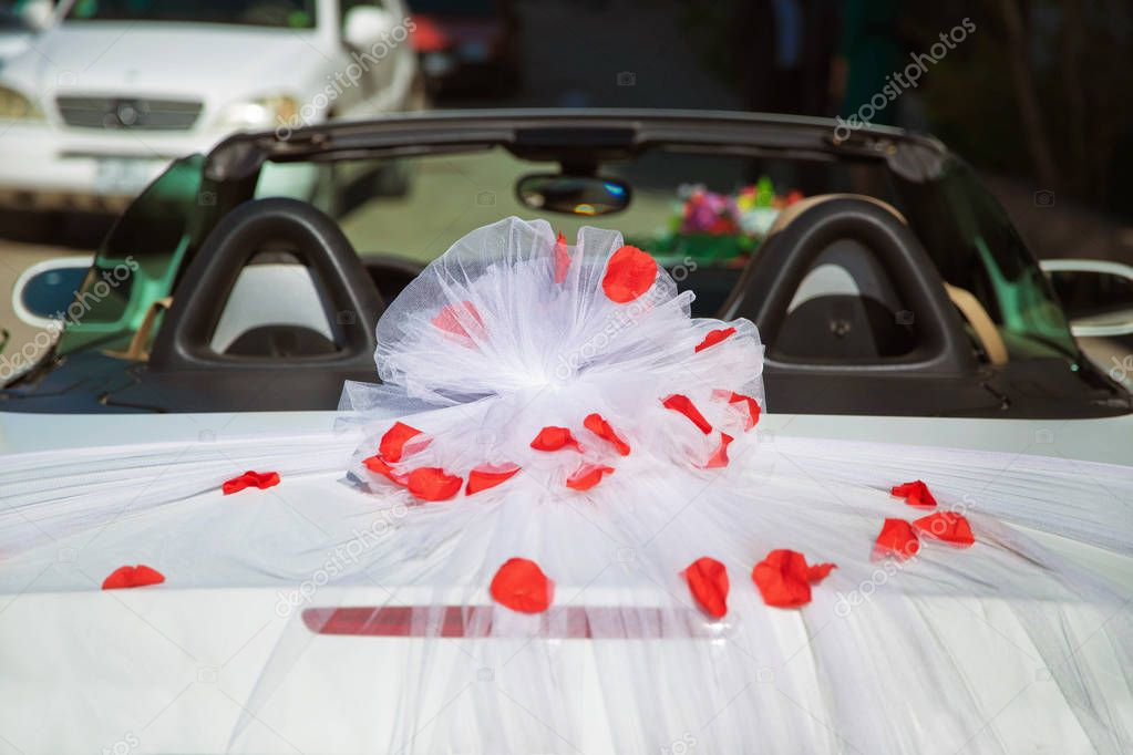 Wedding car back view and petals on top. Luxury wedding car decorated with flowers.just married sign and cans attached.