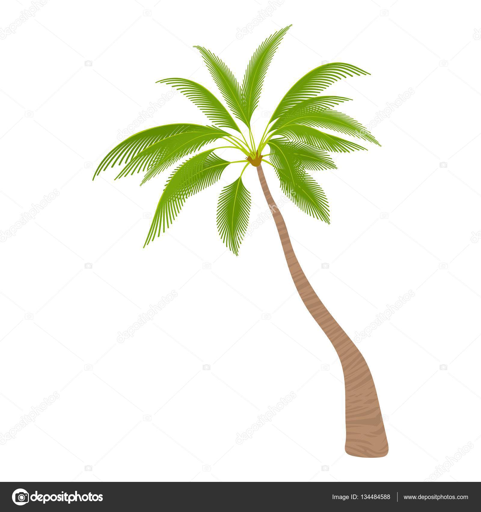 sloped palm tree icon cartoon style u2014 stock vector ylivdesign