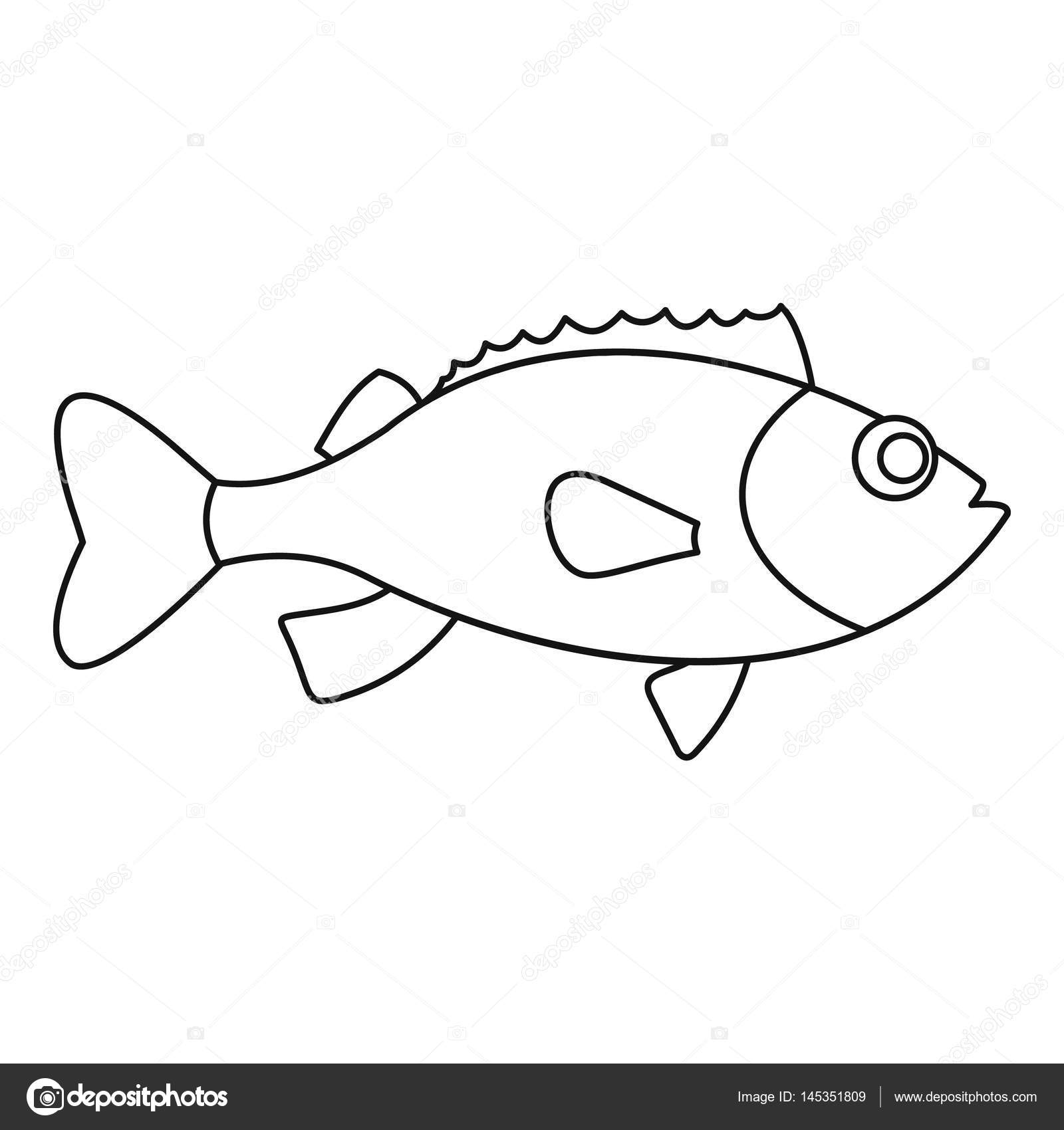 Sea Bass Icon Outline Style Stock Vector C Ylivdesign 145351809