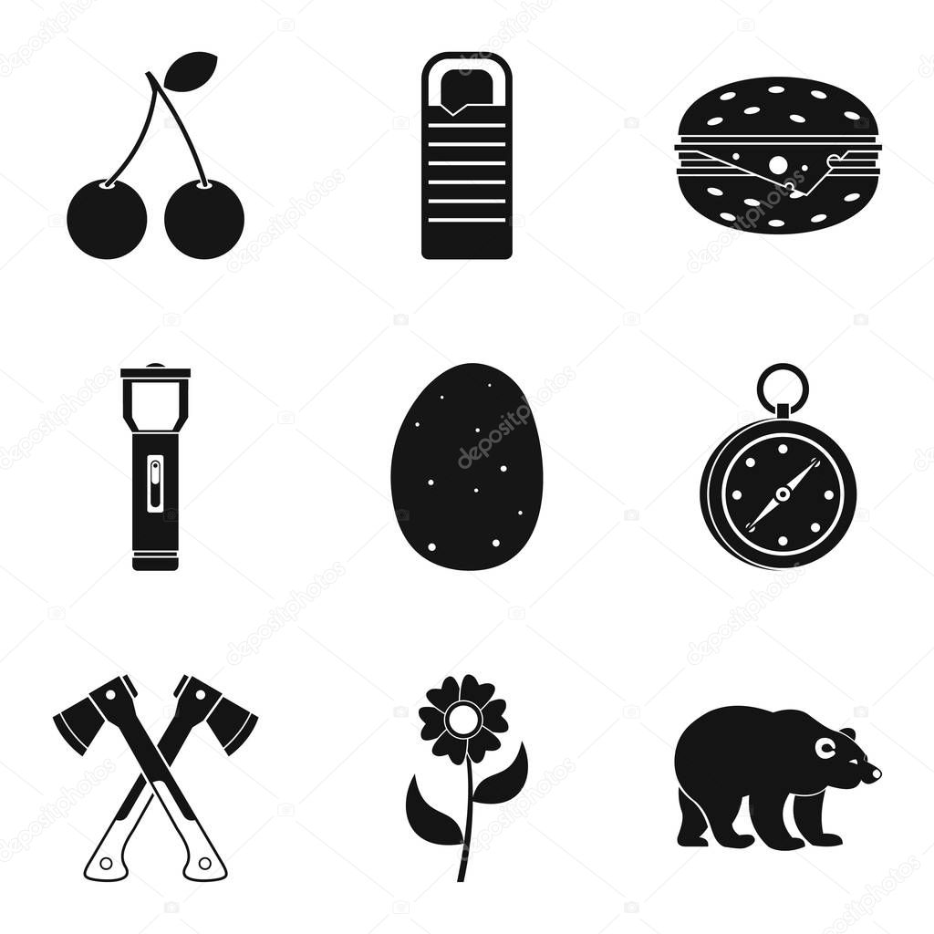 Native icons set, simple style