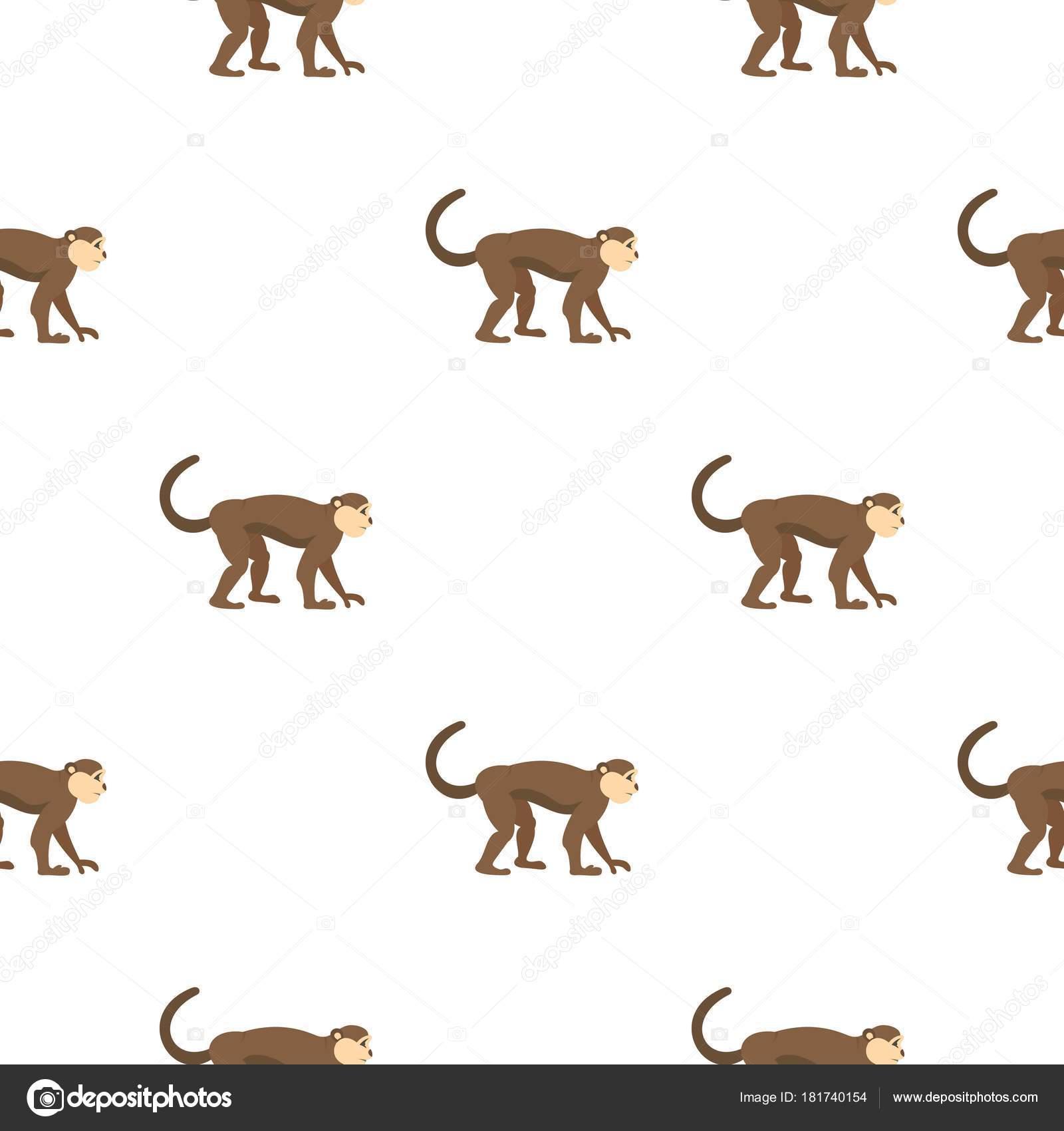 Patrón de mono macaco sin costura — Vector de stock © ylivdesign ...