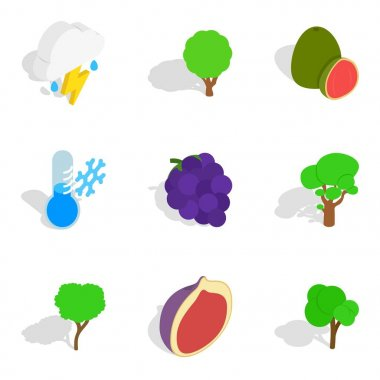 Ecological place icons set, isometric style