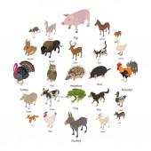 Set di icone raccolta di animali, stile isometrico