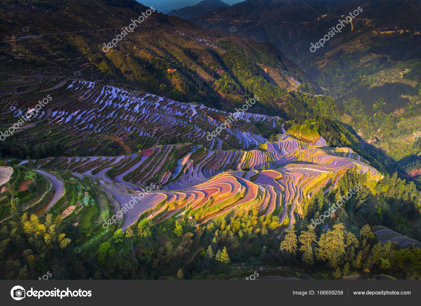 Terraza De Banco De China Foto De Stock Mrmo 166659258