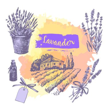 Graphic sketches with lavender