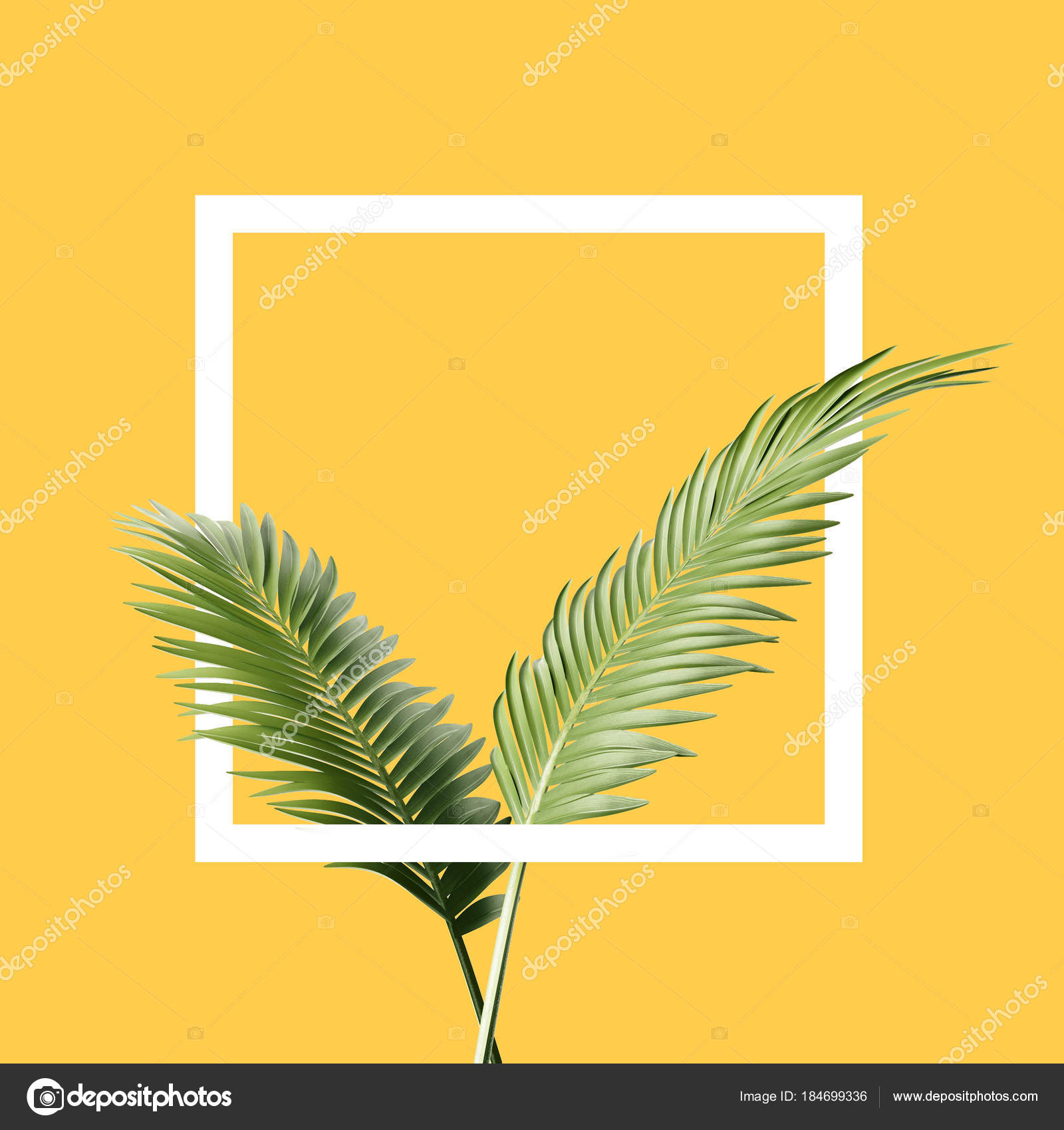 branches palm leaves square yellow background geometry concept