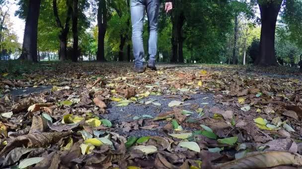 Man Walking On Fallen Leaves