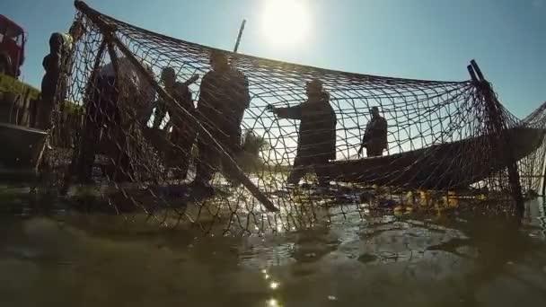 Chov ryb pomocí rybářských sítí - sladkovodní rybáři. Rybář silueta. Sklizeň kapr z rybníka