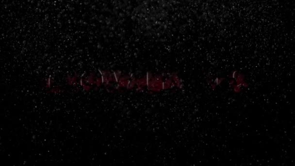 COVID-19, Coronavirus, Capital Letters Animated Text in Red on a Black Background With Floating Particles. COVID-19 Motion Graphic. Transmission of Novel Coronavirus, COVID-19 Pandemic .