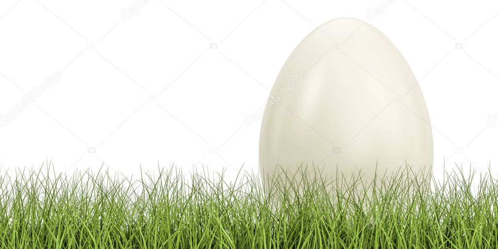 Egg on the green grass, eco concept. 3D rendering