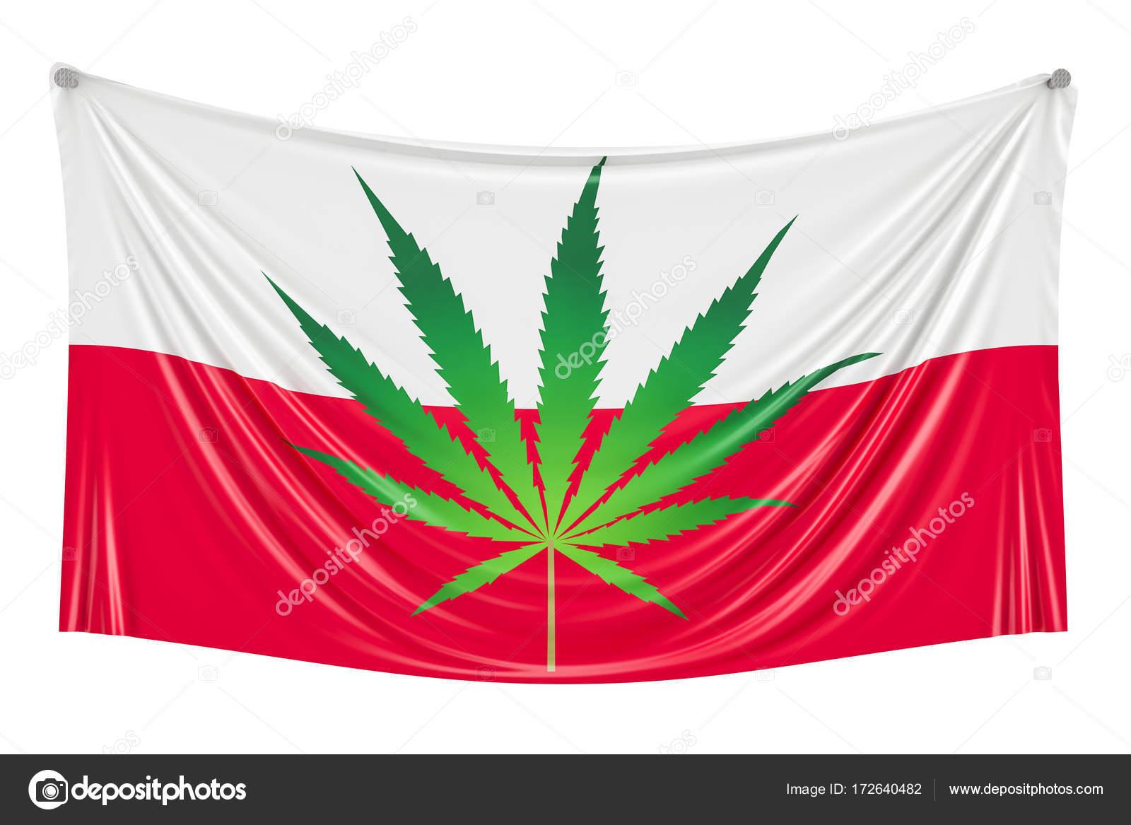 Legalisierung Von Cannabis In Polen Polnische Flagge Mit Marihuana