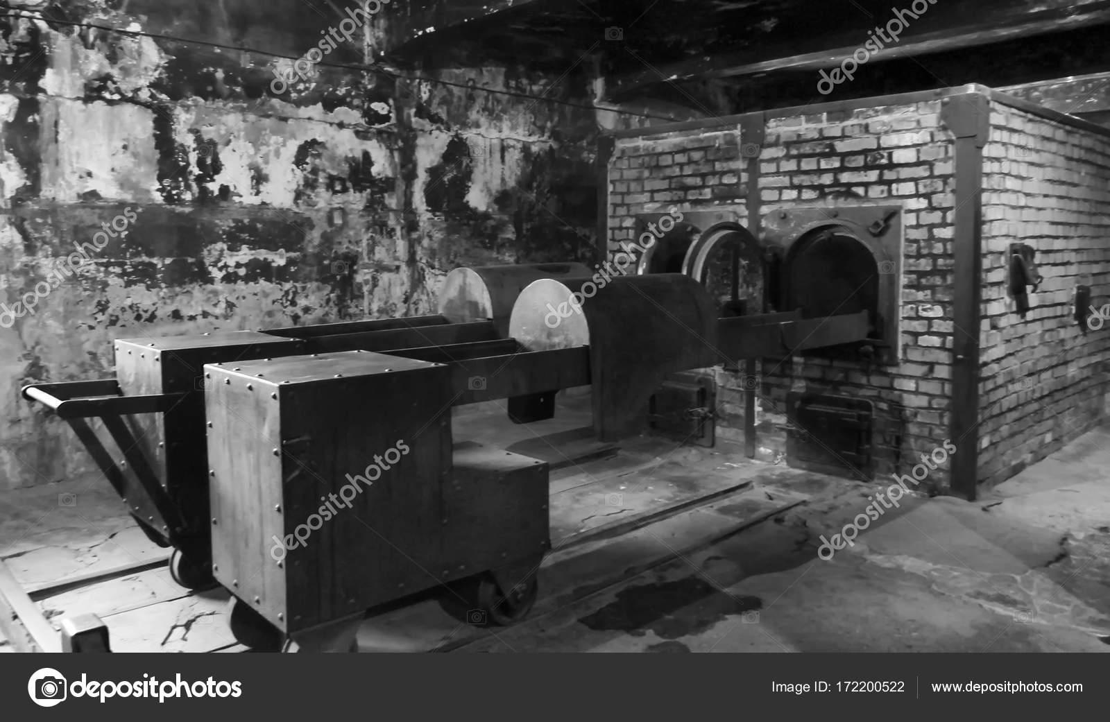 museo di accampamento di concentrazione di auschwitz camere a gas 7 luglio 2015 bianco e. Black Bedroom Furniture Sets. Home Design Ideas