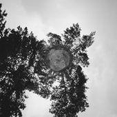 lesní planetu a zamračená obloha