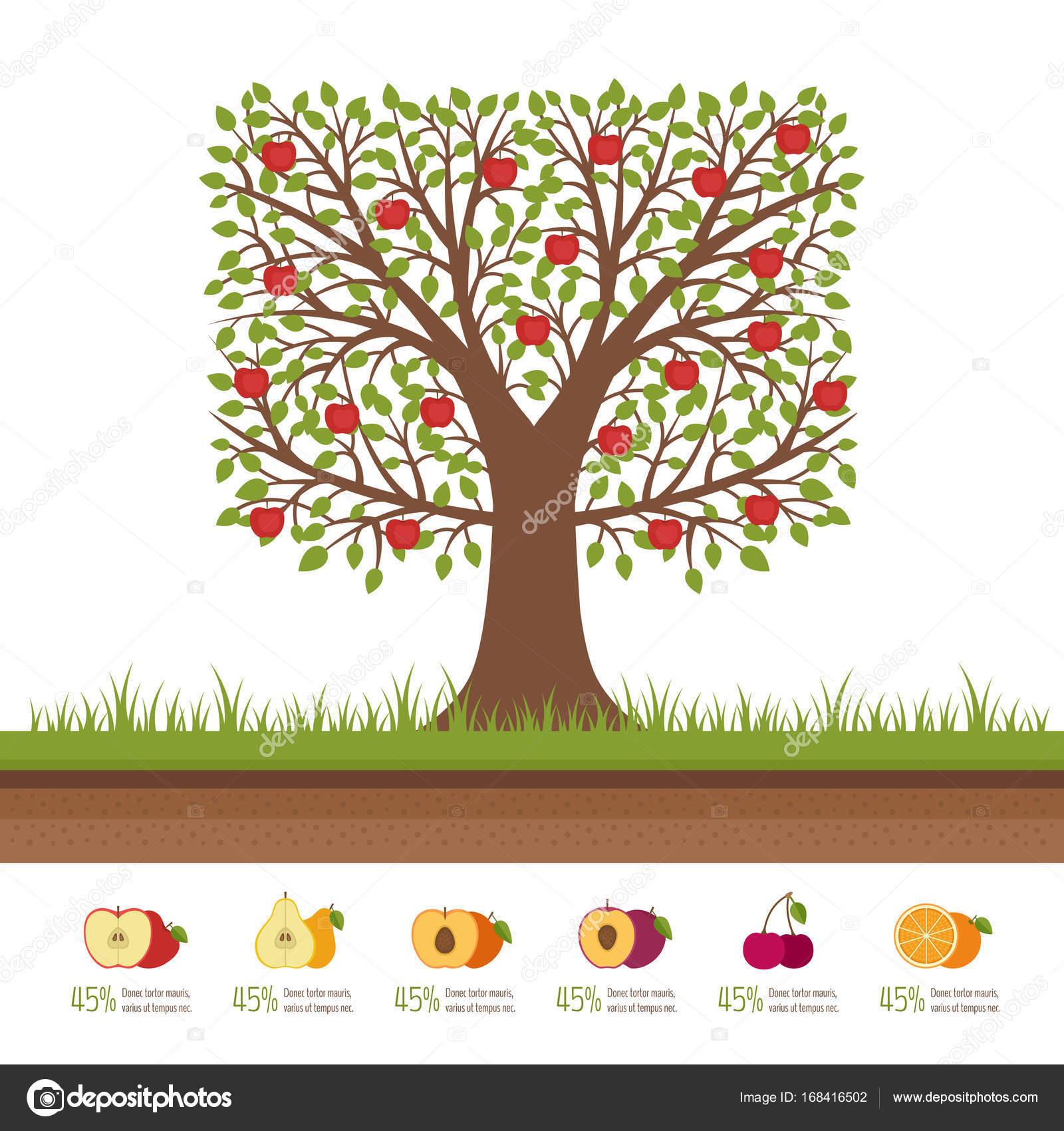 Obstbaum Schneiden apfelbaum mit roten äpfeln boden schneiden gartenarbeit konzept