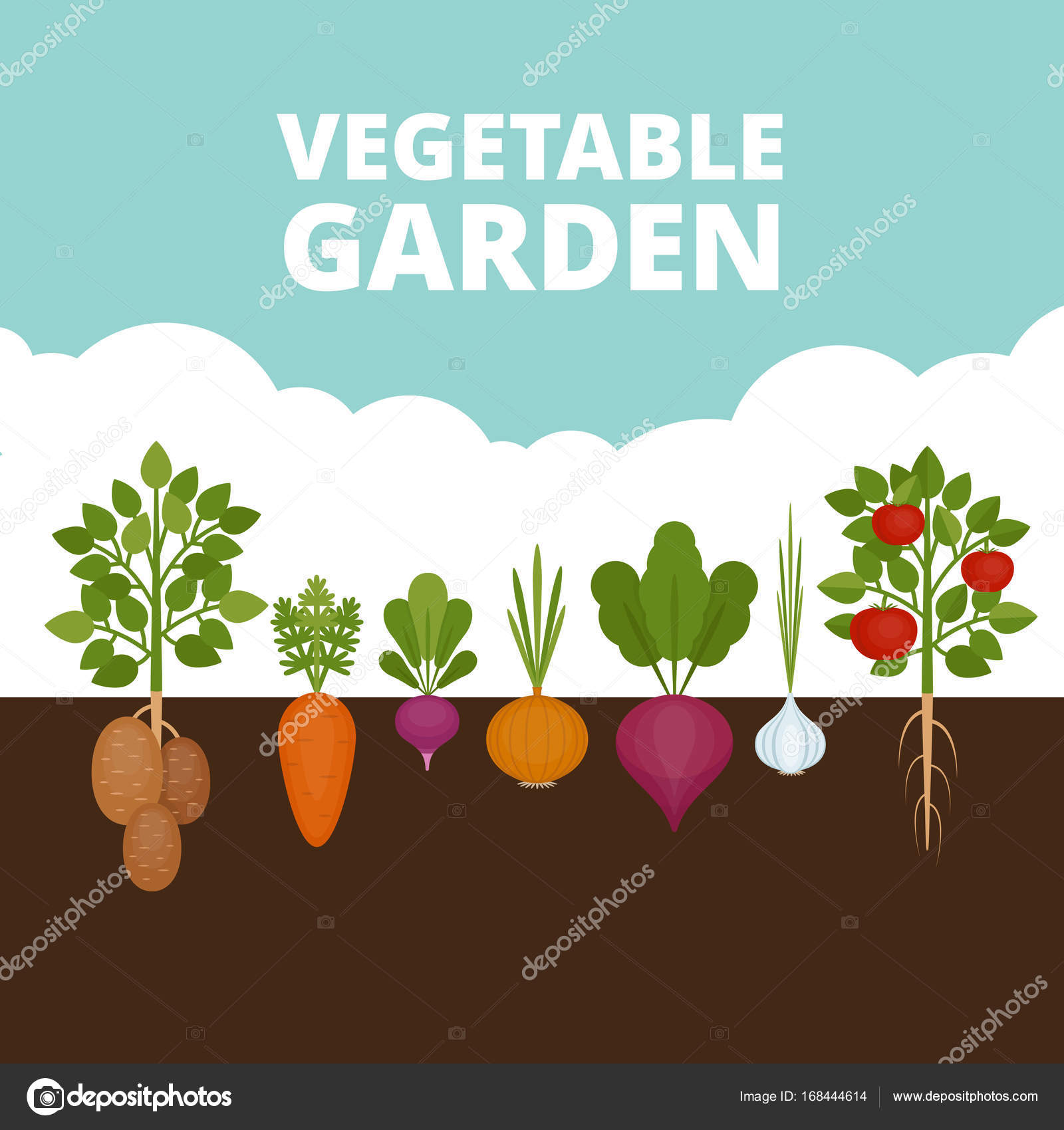 Vegetable garden banner organic and healthy food poster for Stylish vegetable garden