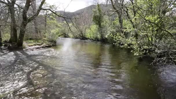 Glen Luss řeka Scotland sklad jasné vody krmení do Loch Lomond Uk