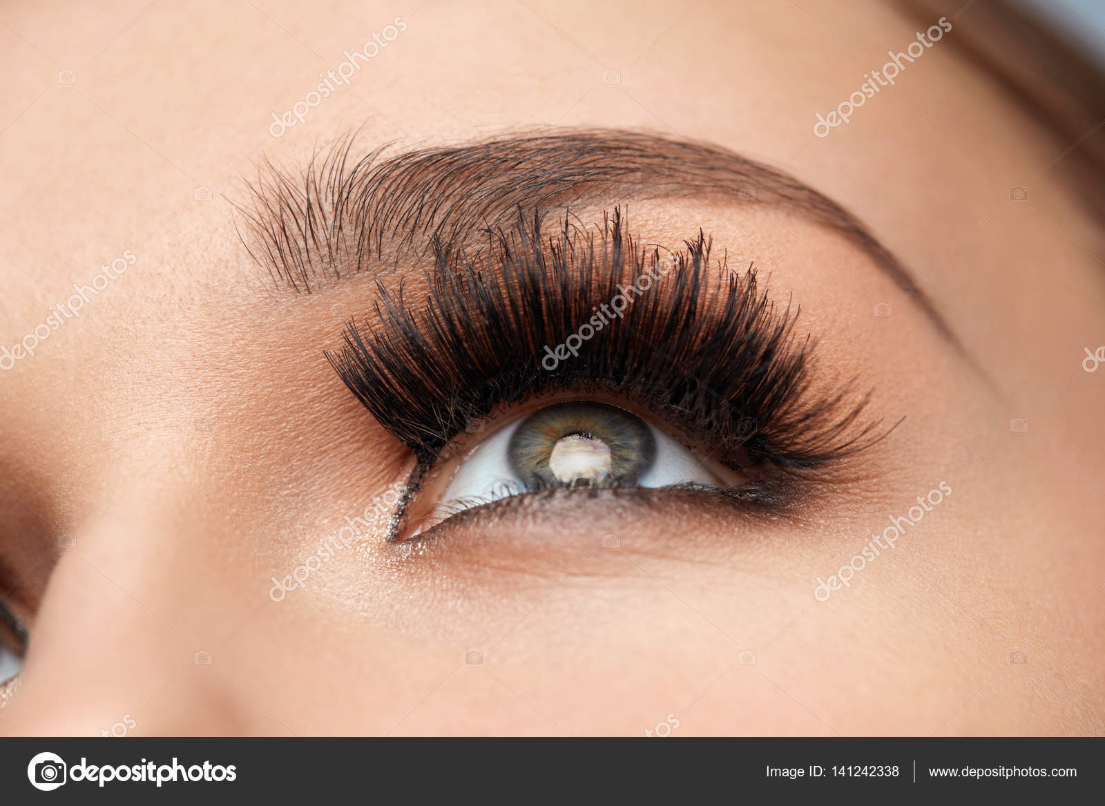 Long Black Eyelashes Closeup Beautiful Female Eye With Makeup