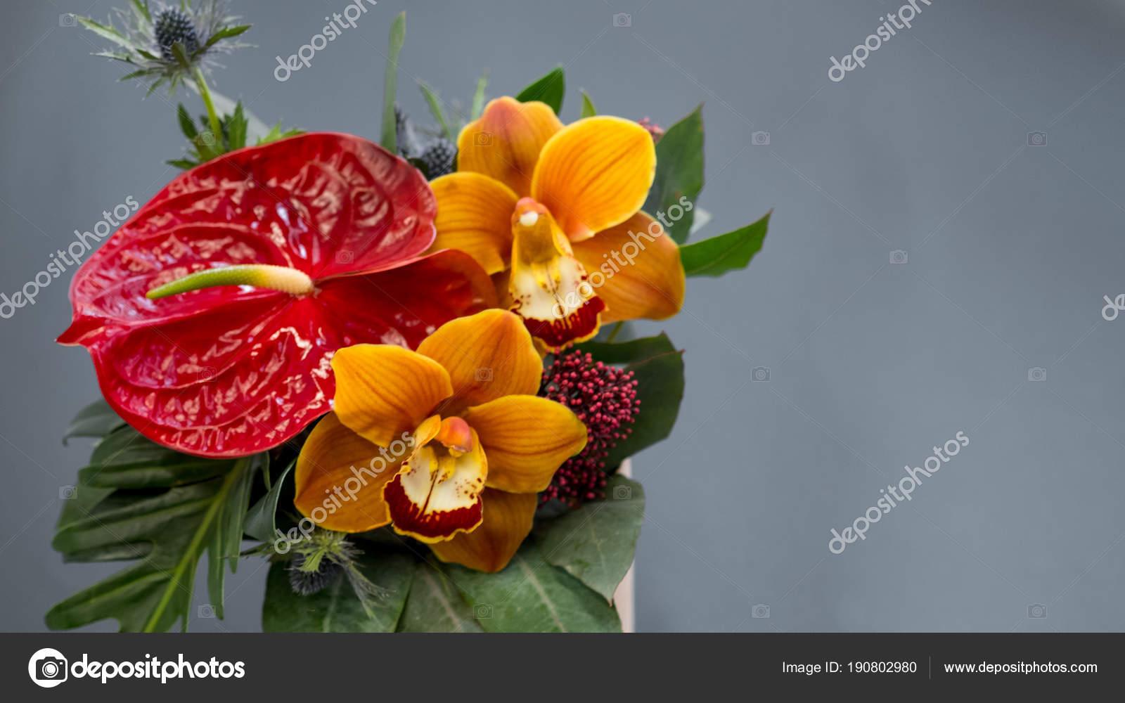 Color Flowers Bouquet Vase Grey Background — Stock Photo ...