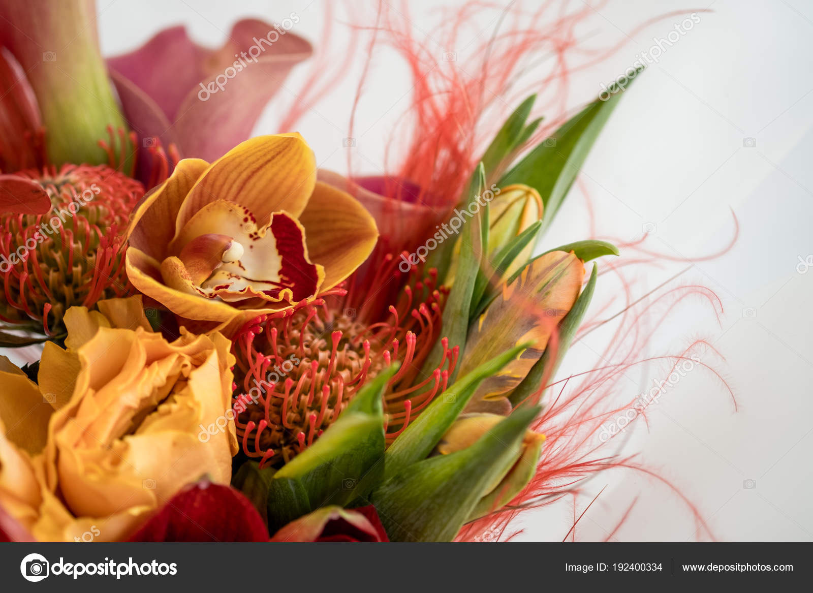 Bright Bouquet Red Exotic Flowers — Stock Photo © Stockoholic #192400334