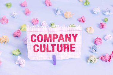 Text sign showing Company Culture. Conceptual photo The environment and elements in which employees work Colored crumpled papers empty reminder blue floor background clothespin.