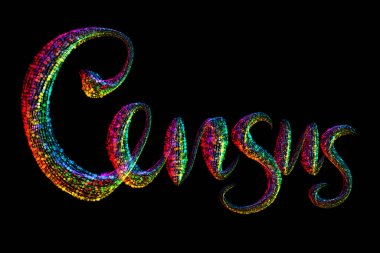 Census, Lettering made by sparkle particles on Black Background. United States of America 2020