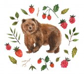 watercolor illustration - brown bear and berries