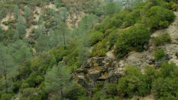 malebné lesní údolí