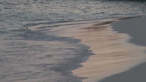 vlny přicházejí na břeh na Bermudách