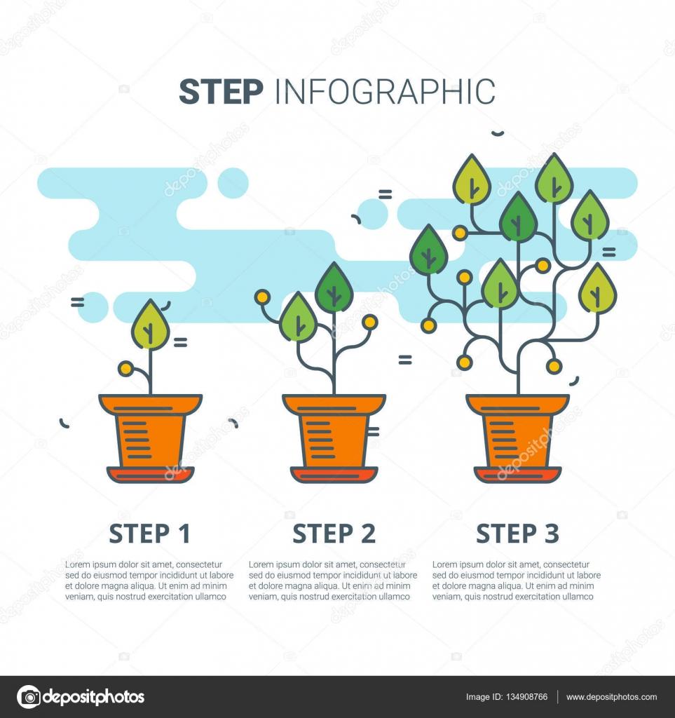 Infografía de paso con las plantas. Concepto de crecimiento ...