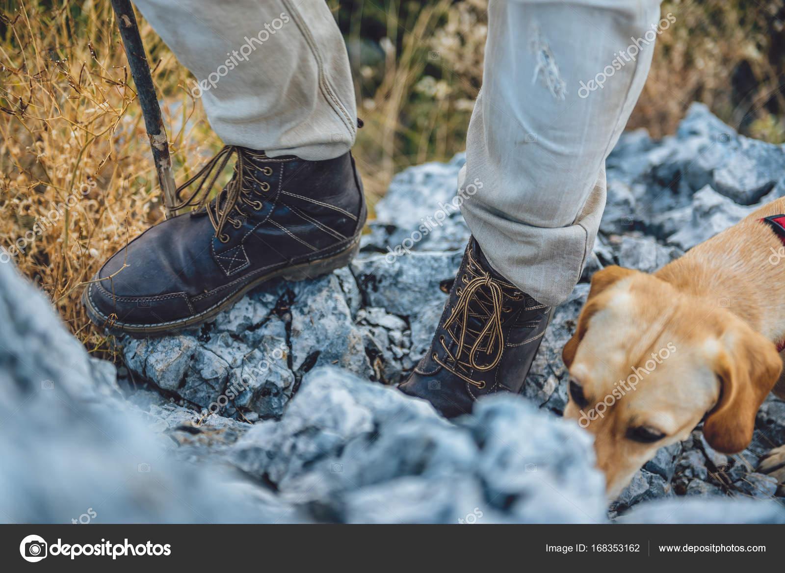 Hiker Stiefel auf Baum Protokoll — Stockfoto © Kerkezz
