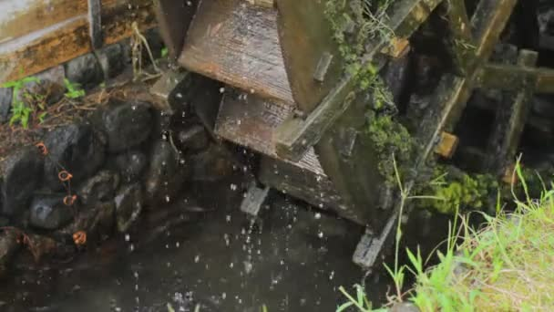vodní mlýn v Saitama blízko zastřelil hluboké zaměření. / Její přírodní lokalita v Japonsku. 4k  čas zanikla. fotoaparát: Canon Eos 7d
