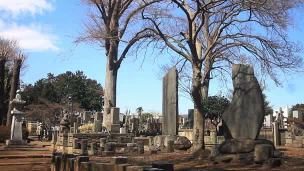 Hrob pravé široké střílel na Gotokuji chrám v Tokiu. / Své tradiční místo v Tokiu. fotoaparát: Canon Eos 7d