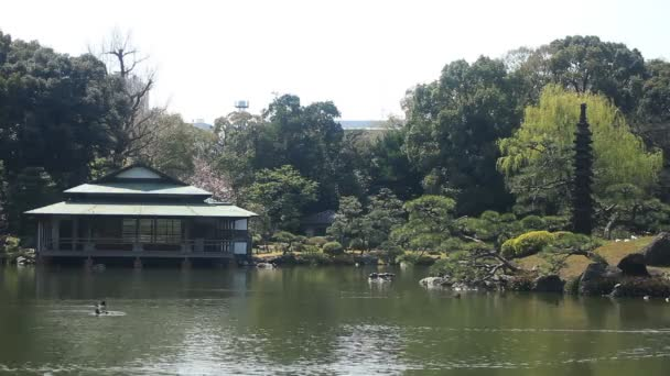 V japonské zahradě střední šanci na Kiyosumi Shirakawa pavilonu. / Jeho tradiční park v Tokiu. fotoaparát: Canon Eos 7d