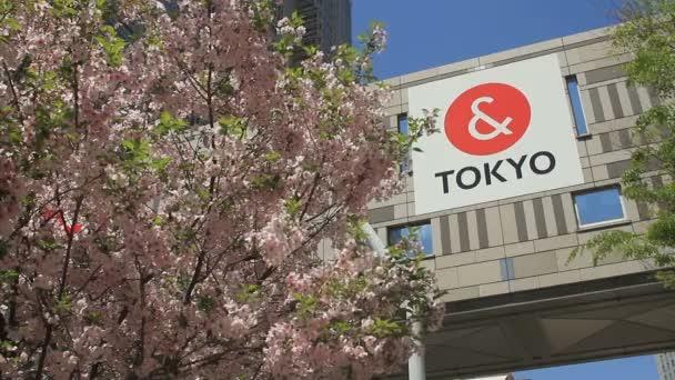 Třešeň a logo na úřadu vlády Tokyo v západní Šindžuku / jeho umístění města v Tokiu. 4k  čas zanikla. fotoaparát: Canon Eos 7d
