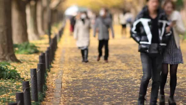 Walking people at the ginkgo street in Tokyo at autumn