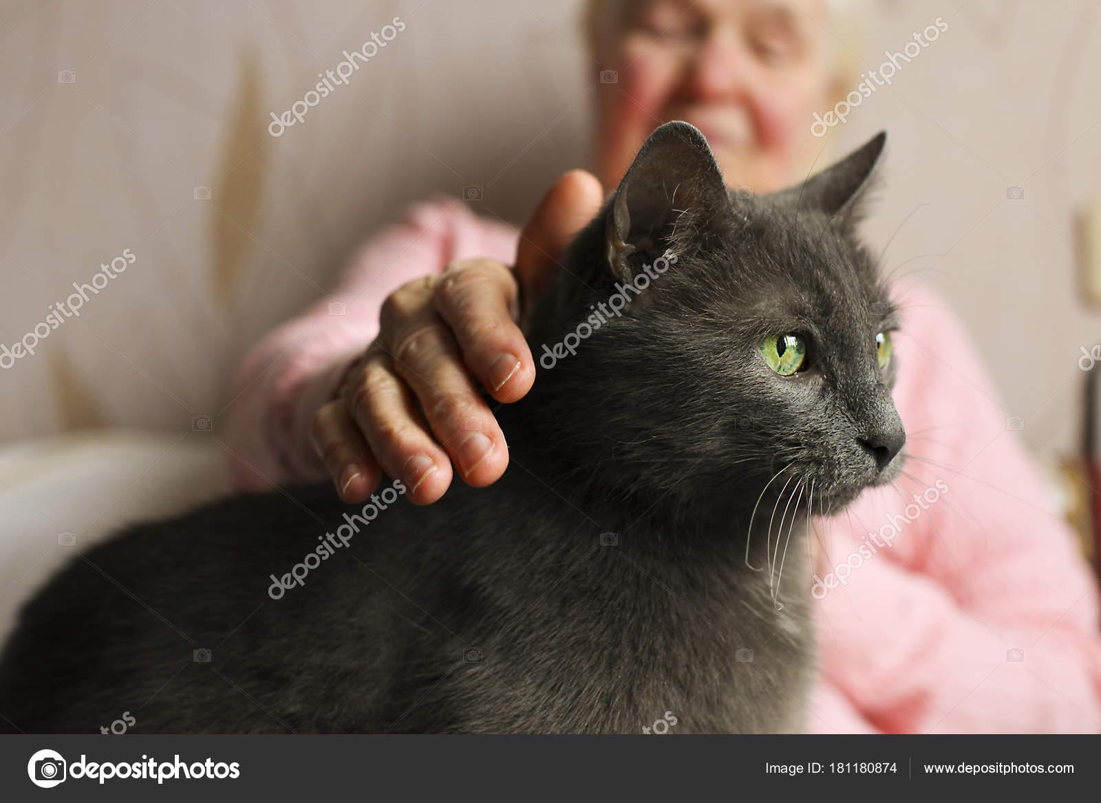 Kočička velká žena