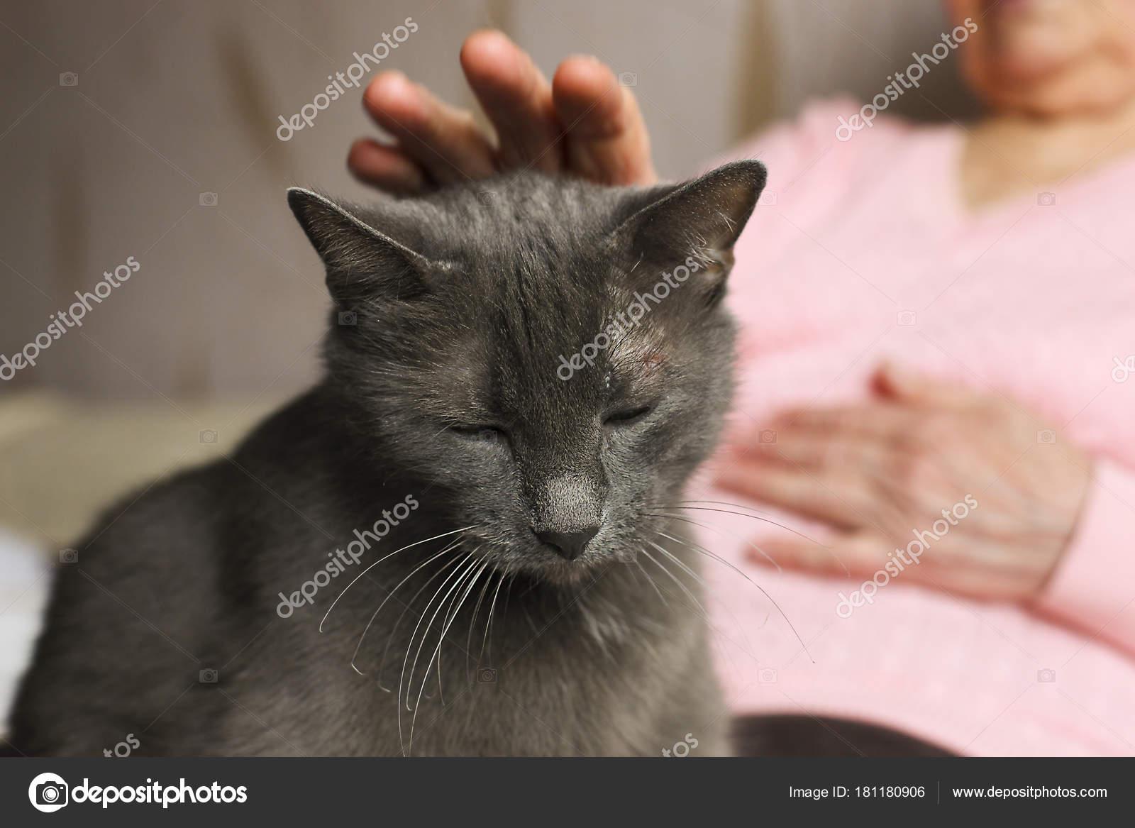 Její kočička je velká