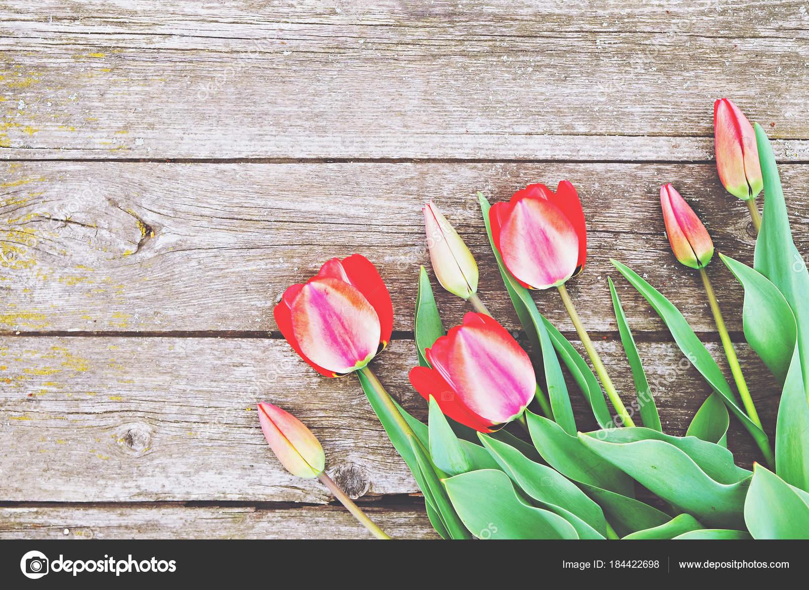 Настоящий женский цветок крупным планом, прилюдное раздевание смотреть онлайн