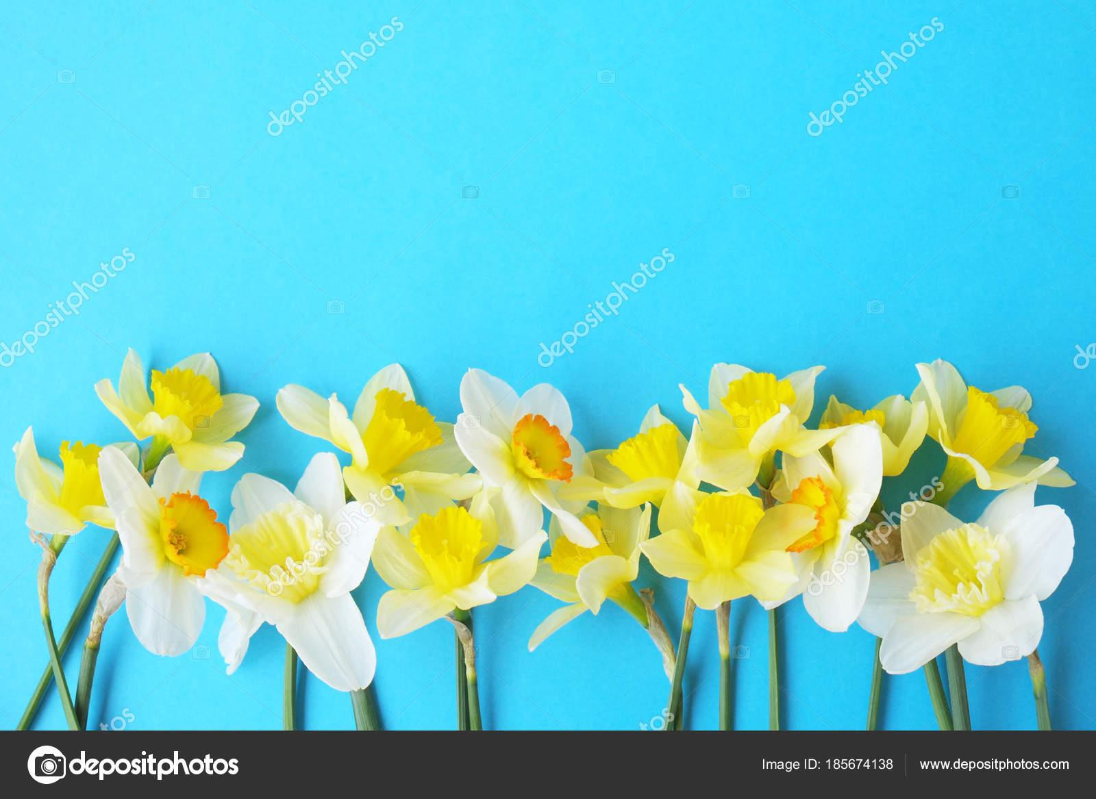 Zarte Minimalistisch Frühling Blumen Auf Texturoberfläche
