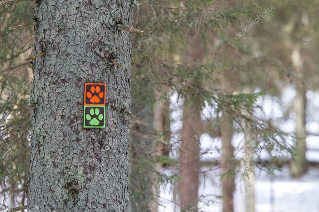 Colorful signs in a nature park at winter