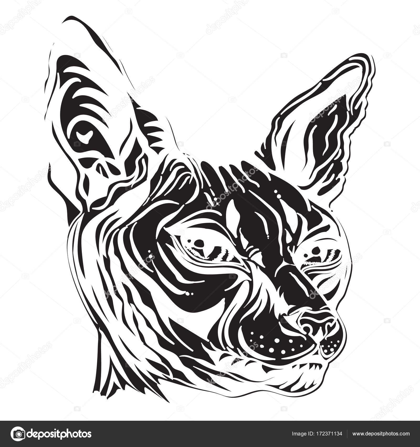 Gato Egipcio Diseño Dibujo De Una Cabeza De Gatos Blanco Y Negro