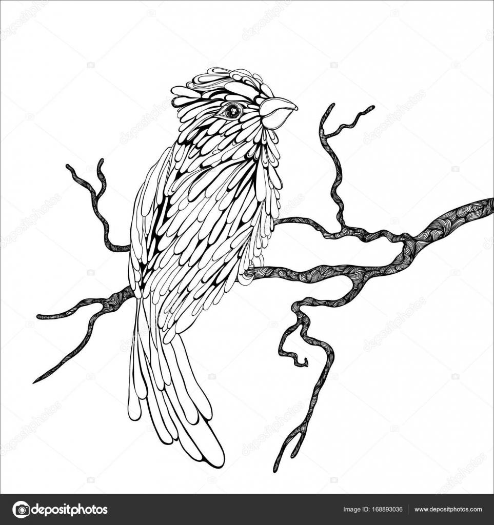 Oiseau Sur Une Branche Image Vectorielle Totamilow C 168893036