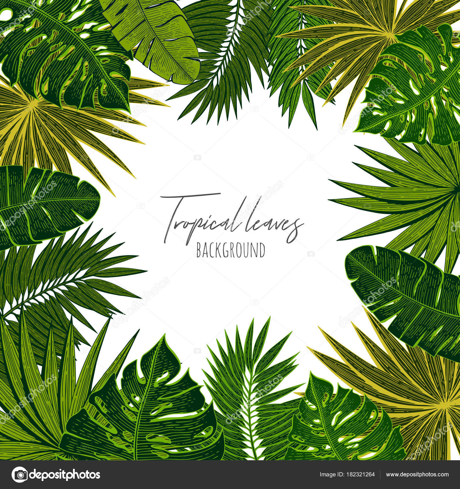 Green Floral Frame With Tropical Leaves Botanical Design Template For Wedding Invitations Greeting Cards Postcards Web Design Social Media Labels Packaging Design Frame For Quotes Stock Vector C Totamilow 182321264 Calligraphy graphic design style slogan for shop, promotion, motivation, poster, card, decoration, sticker. https depositphotos com 182321264 stock illustration green floral frame with tropical html
