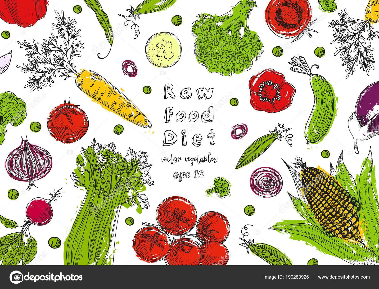 Bio-Lebensmittel-Design-Vorlage. Frisches Gemüse. Detaillierten ...