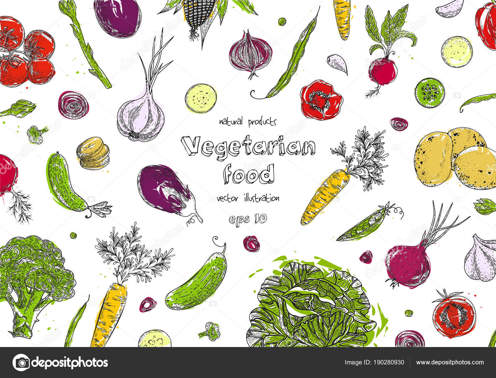 organic food design template fresh vegetables detailed vegetarian