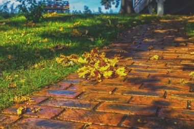 Brick footpath in October. Red brick and grass on both sides.