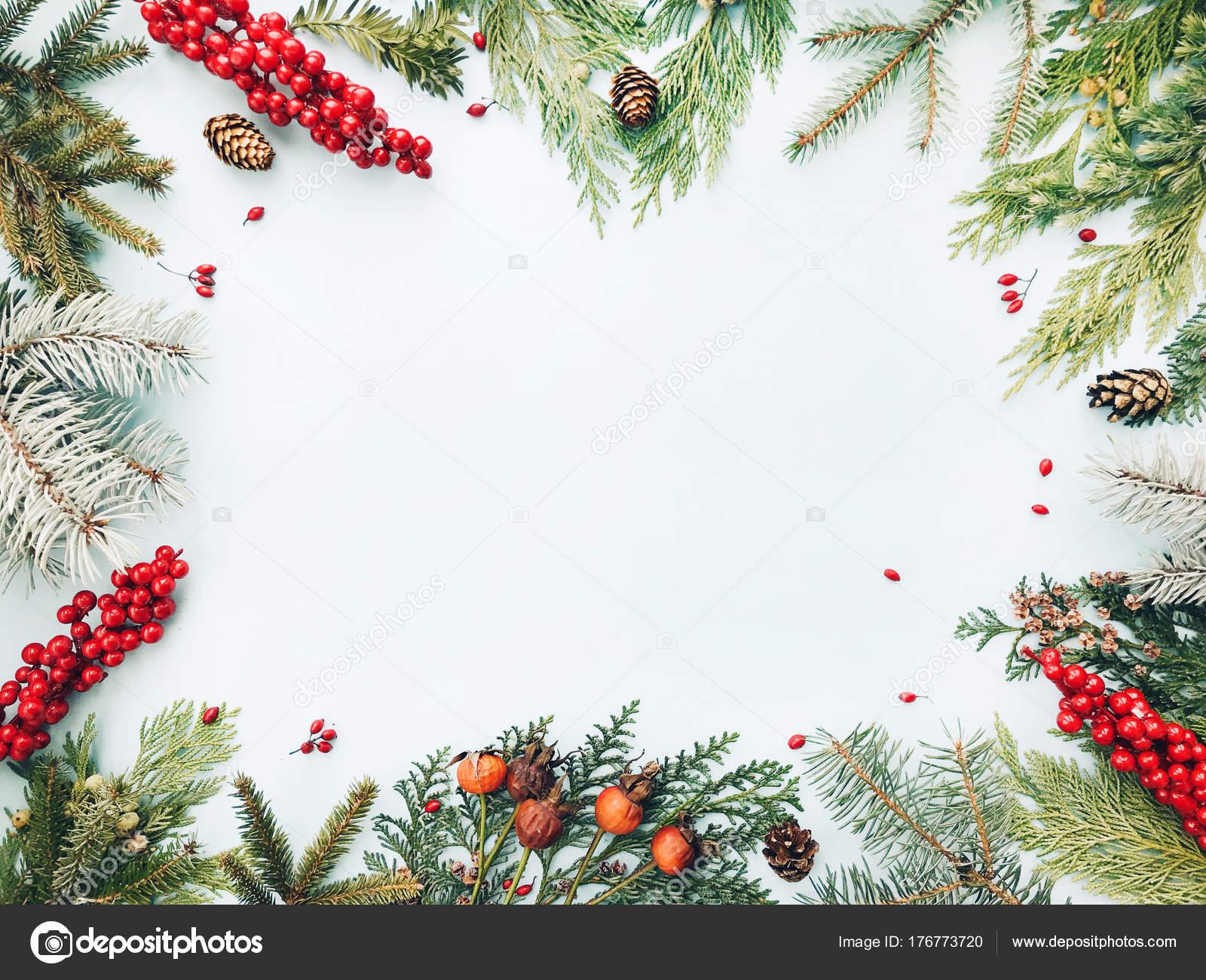 Fondo Navidad Marco Floral Hecho Abeto Navidad Abeto Tuya árbol