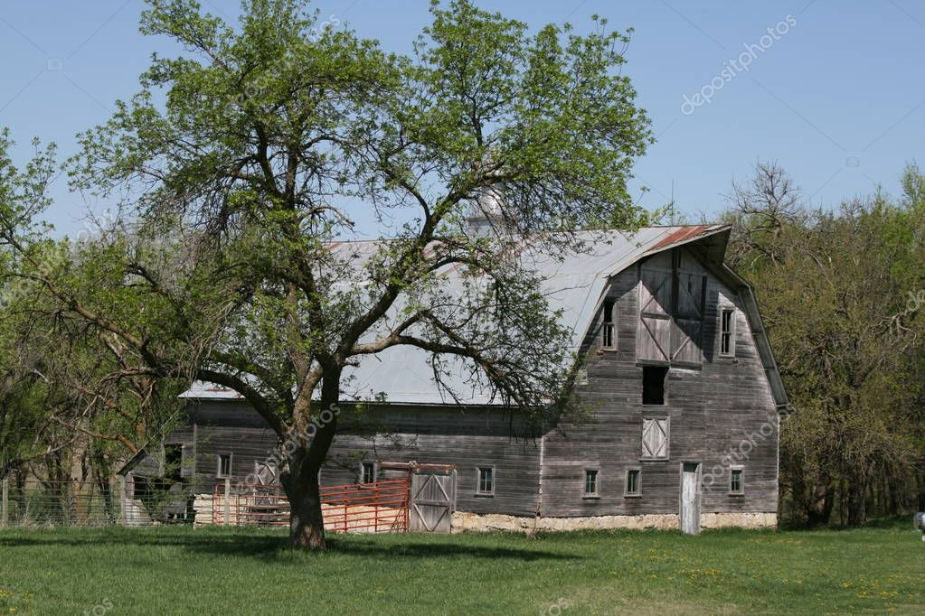 Barns in the Midwest